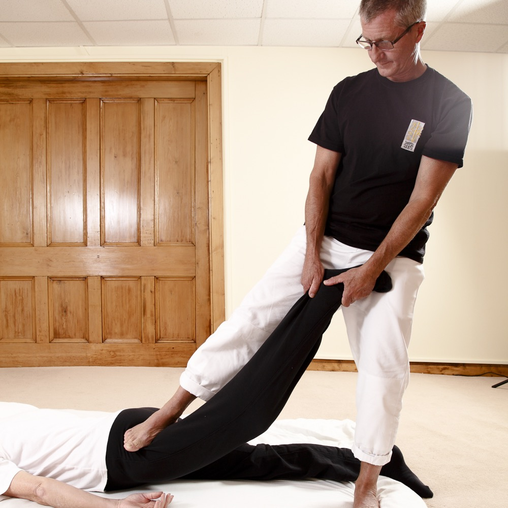 Five Element Shiatsu_stretch
